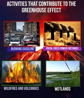 Activities That Contribute to the Greenhouse Effect