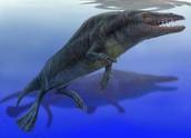 pre-historic whale