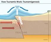 Tsunami cause
