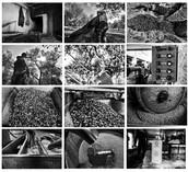 """""""U' trappit"""" - Mostra fotografica a cura di Domenico Tangro"""