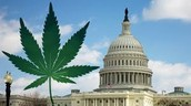 Marijuana legal in DC