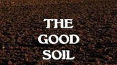 Good/Healthy Soil