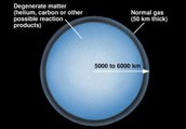 What's inside of a white dwarf