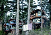 Lodges at Ucluth Beach 10 a.m. -Noon, Feast House at Kwisitis 1-3 p.m.