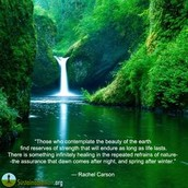 NATURE AS A HEALER WITH,---------- MARLOW D. J. SHAMI -------------------– Sunday. May 22, 2 pm
