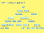 Romance Branch languages