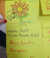 Foldables as Visuals and Study Tools