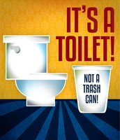 Dont use your toilet as a trash can!
