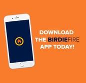 Birdie Fire Stats