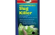 Liquid Chemical to kill off the bug.