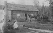 Whelan Family orchard