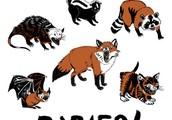 Rabid Animals