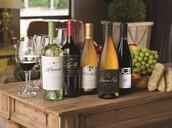 Jill Schultz: The Wine-o