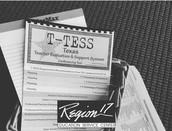 T-TESS Conferencing Flipchart (ESC Region 17)