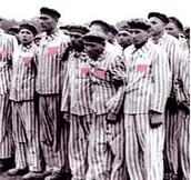 Homosexuality During the Holocaust