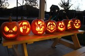 Five top pumpkins from the United States 2015.
