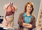 Teaching anatomy.