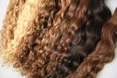 Goal #3: Hair Color