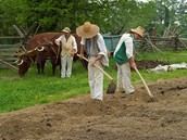 Great Farming Soil!