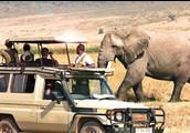 Parque nacional en Arusha, Tanzania