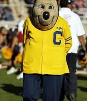 Oski the golden bear