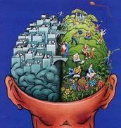 Left Hemisphere (Logic)