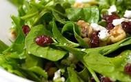 IQ Mega Salad