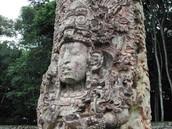Mayan Culture
