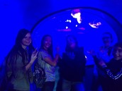 STEM Sophomores visiting Discovery Place!