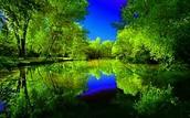 Land of 10000 Lakes