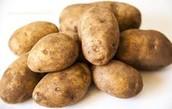 Medicinal Potatoes