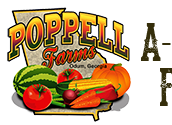 Poppell Farms Corn Maze and Pumpkin Patch