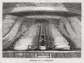Interior of a Slave Ship