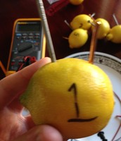 Lables on the lemons