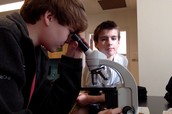 Forensic Hair Analysis Lab
