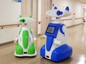 The Hospital Robot