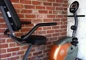 Schwinn 250 Recumbent Exercise Bike reviews