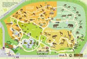 Perth Zoo Map