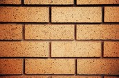 These bricks are rectangles