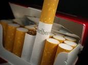 Tobacco Survey