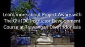 Test Yourself - Project AWARE - PADI IDC Gili Islands