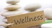 Wellness Commitee