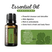 What can I use Cilantro Essnetial Oil for?