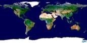 Where To Find Alkali Metals