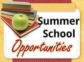 ACS Summer School Information