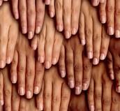 Keratin is most abundant in skin.