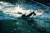DHS Swim Team