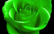 green personality