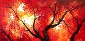 Autumn Sky - $25 Special