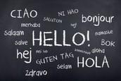 Bilingual/ESL Teachers, Supervisors